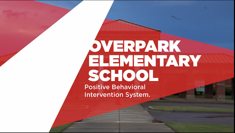 Information about Positive Behavioral Intervention system