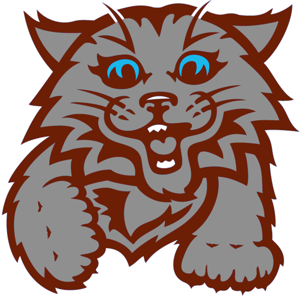 Click this wildcat image to be taken to a page set up for SES students to easily select online games and activities.