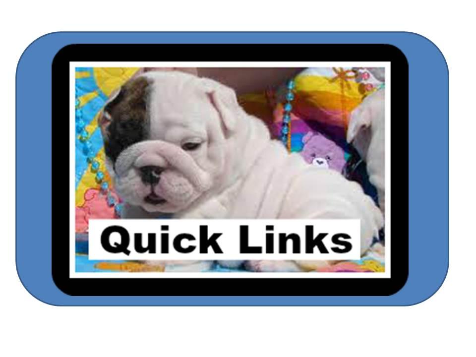 Link to Symbaloo website for School QuickLinks
