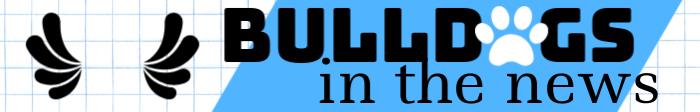 bulldogs in the news