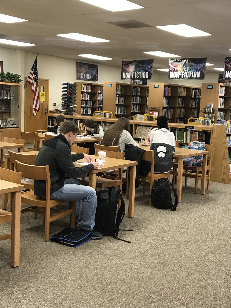 Studnts in Library