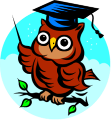 Owl wearing graduation cap sitting on a branch