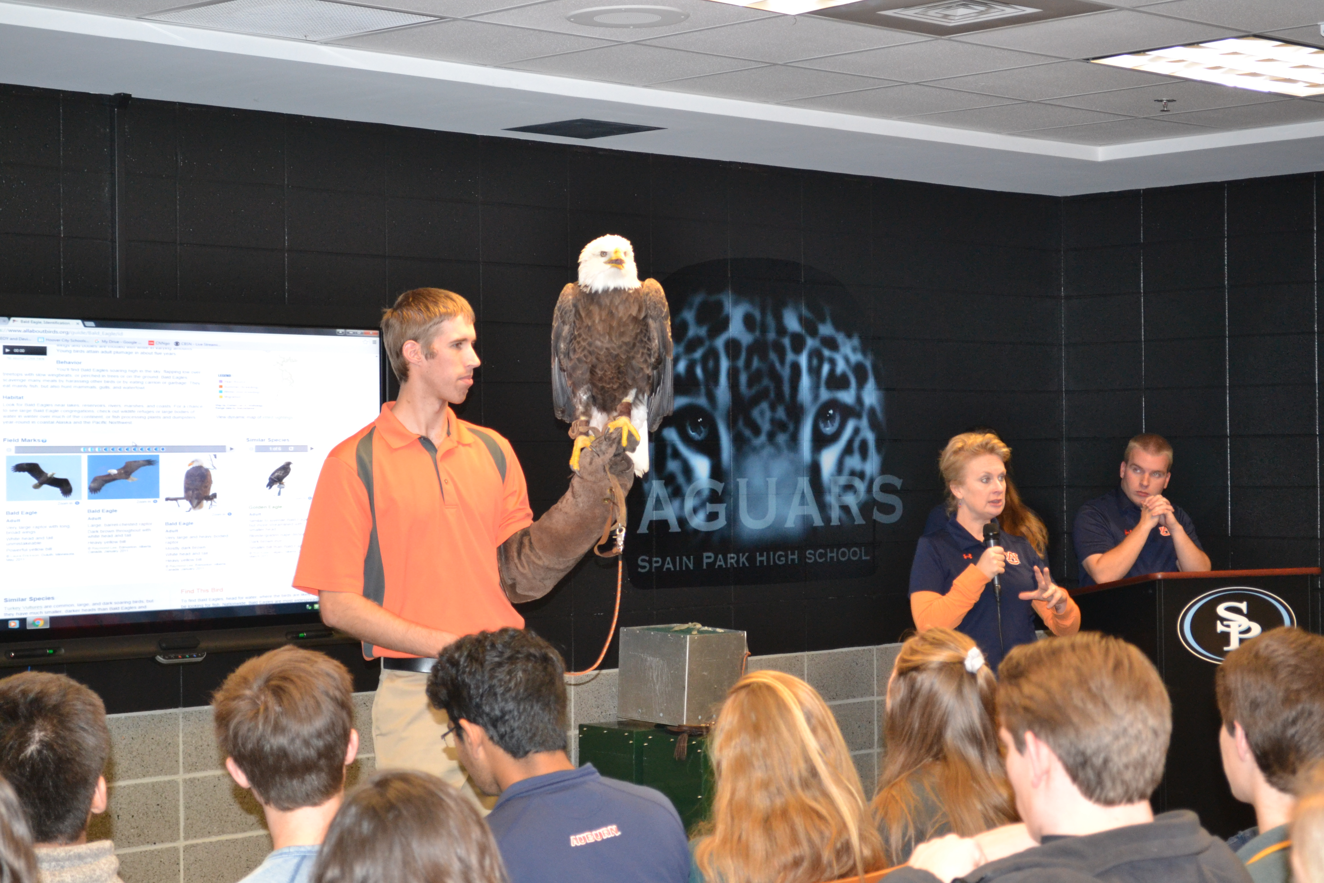 Southeastern Raptor Center Faculty displays and present information on a bald eagle named Spirit.