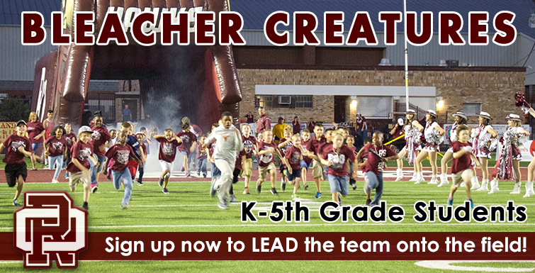 Graphic to advertise Bleacher Creatures
