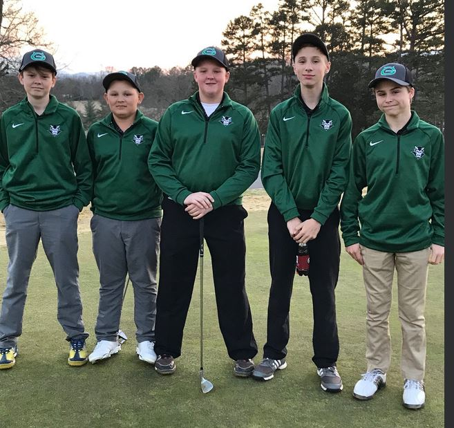 Picture of boys golfing