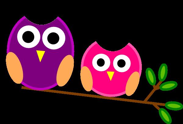 2 owls
