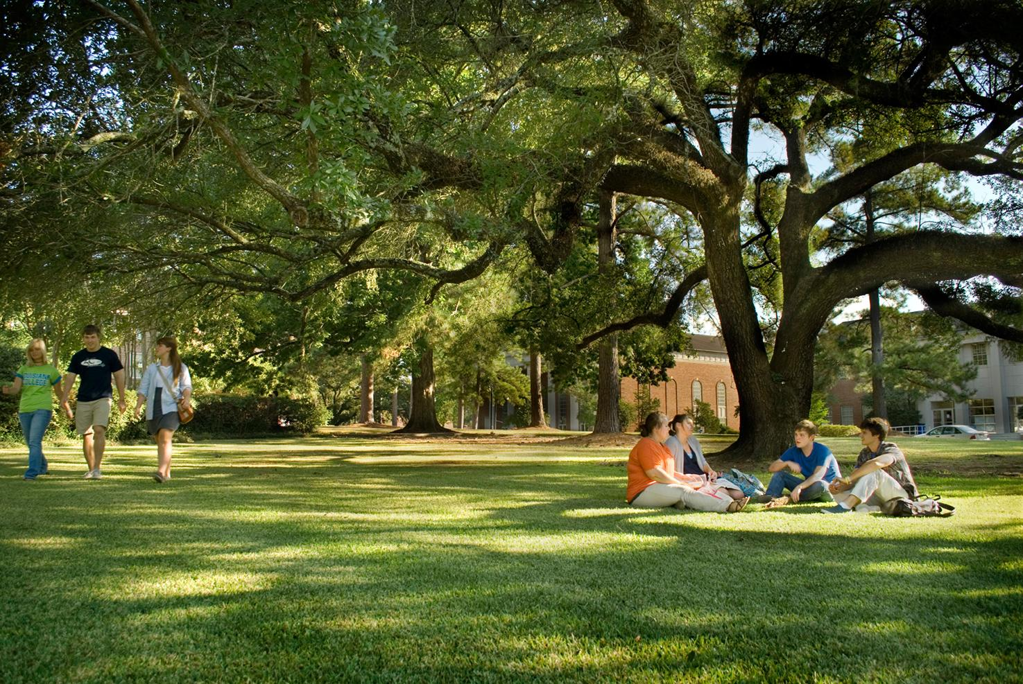 welcome to the consortium for global education website louisiana college is also launching a robust esl program for students that require support as they transition in terms of requirements students a