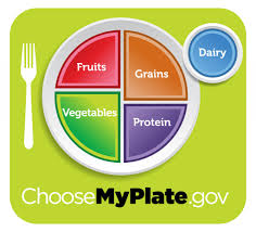 Healthy Choices Icon