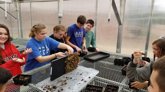 FCMS agriculture students gain hands on experiences in the middle school greenhouse