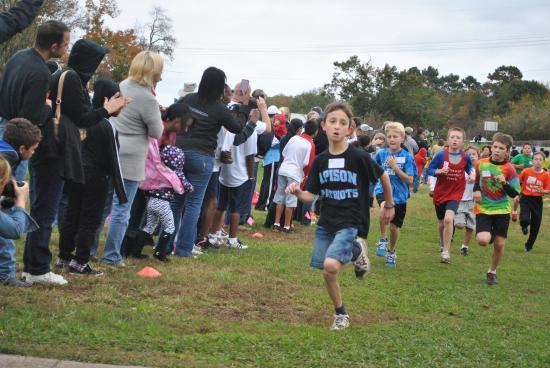 Announcement Image for 2015 HAMILTON COUNTY ELEMENTARY CROSS-COUNTRY MEET