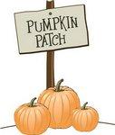 View Pumpkin Patch 2012