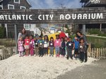 View Spruce Head Start students visit the A.C. Aquarium