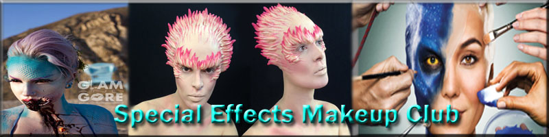 Special effects makeup schools